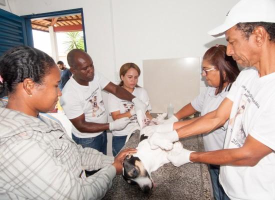 Centro de Zoonoses já castrou mais de 800 animais só este ano em Itabuna
