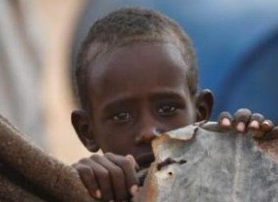 Cerca de 50 milhões de pessoas passam fome na América Latina e Caribe