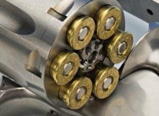 Decreto de posse de arma pode aumentar prazo de registro, diz Fraga