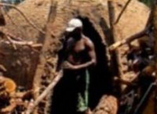 Governo tenta localizar vítimas de trabalho escravo para pagar indenização