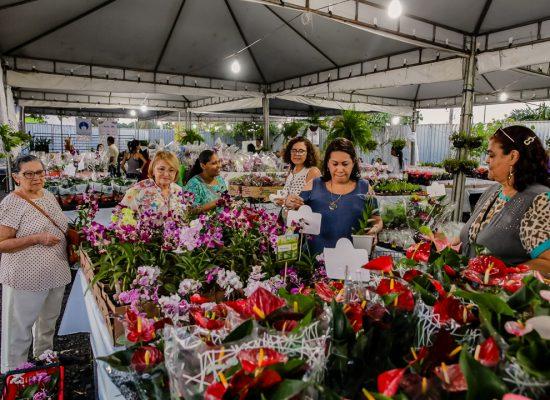 """Exposição """"Ilhéus Em Flor"""" é prorrogada até sexta-feira (5)"""
