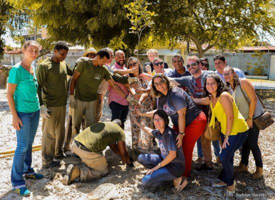 Prefeitura inicia plantio de mil mudas de árvores nativas em vias públicas da cidade