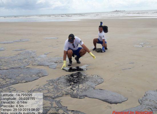 Limpeza das praias de Ilhéus com óleo vazado reúne voluntários