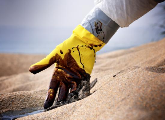 Capes vai liberar R$ 1,3 milhão para pesquisas sobre manchas de óleo