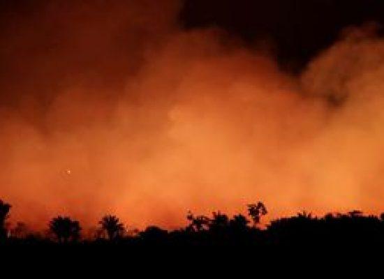 Brigadistas são presos suspeitos de incêndios em Alter do Chão