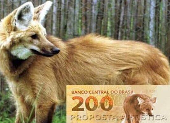 BC INFORMA QUE CÉDULA DE R$ 200 COMEÇA A CIRCULAR NESTA QUARTA (2)