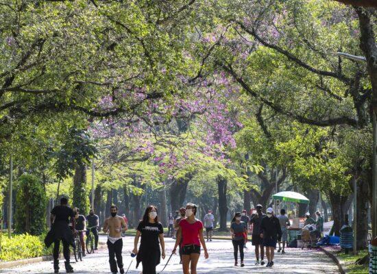 Plataformas orientam eleitores e prefeitos sobre agenda ambiental