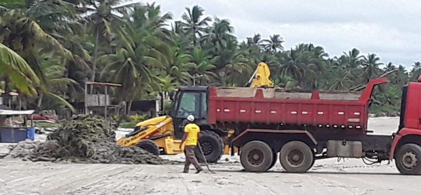 Prefeitura realiza mutirão de limpeza para retirada de baronesas nas praias de Ilhéus