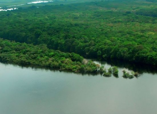 AGU comemora resultados da Força-Tarefa em Defesa da Amazônia