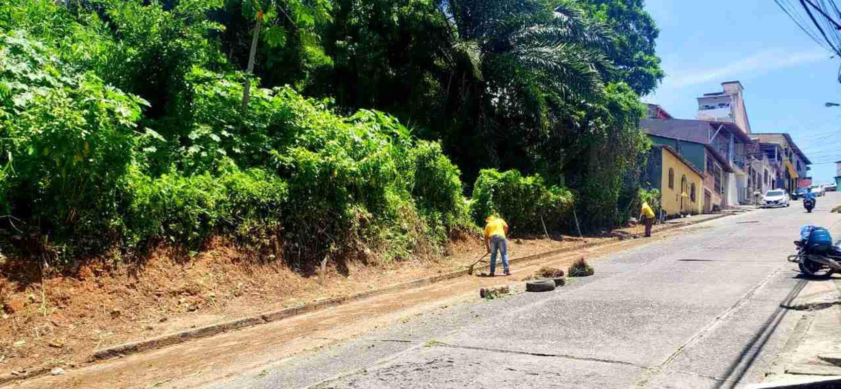 Prefeitura atende pedido de Nino com limpeza e roçagem da avenida Belmonte