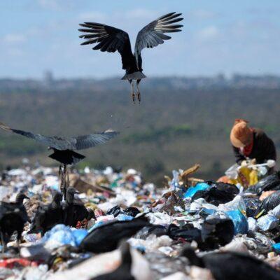 MATÉRIA: Erradicar os lixões no Brasil é questão de saúde pública