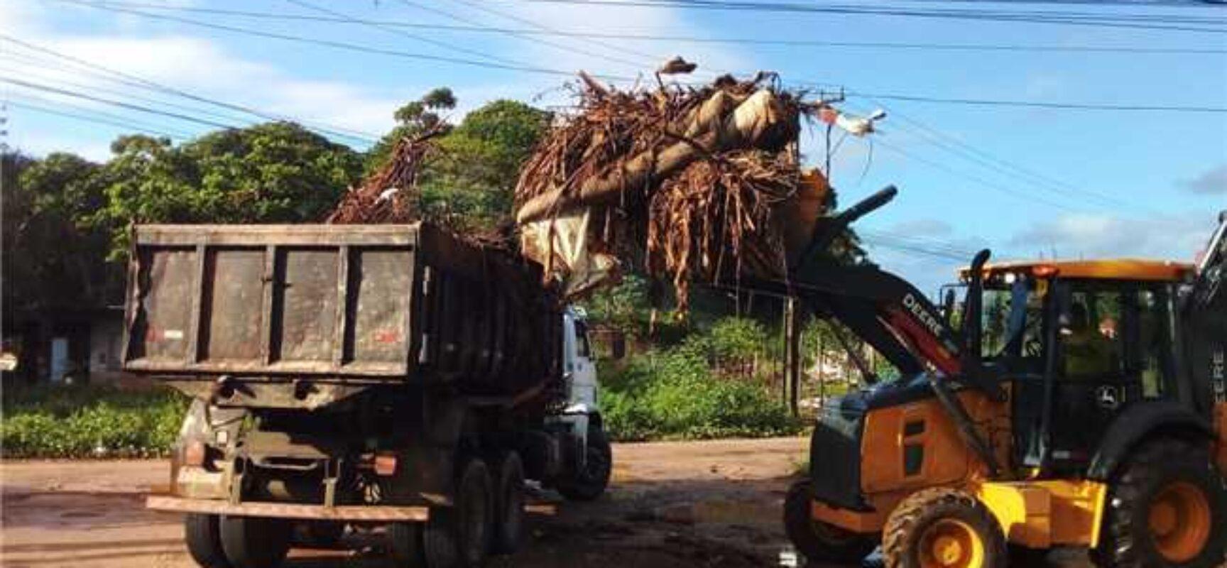 Prefeitura de Ilhéus realiza mutirão de limpeza e recolhe mais de 200 toneladas de lixo