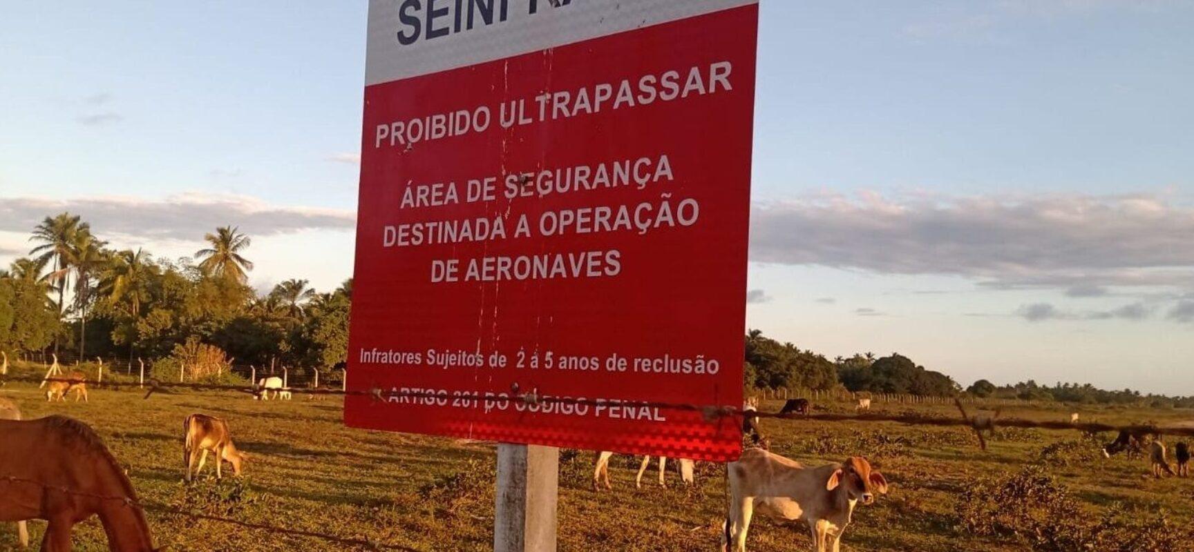 BELMONTE: Interditado, aeroporto no sul da Bahia vira pasto para vacas e cavalos