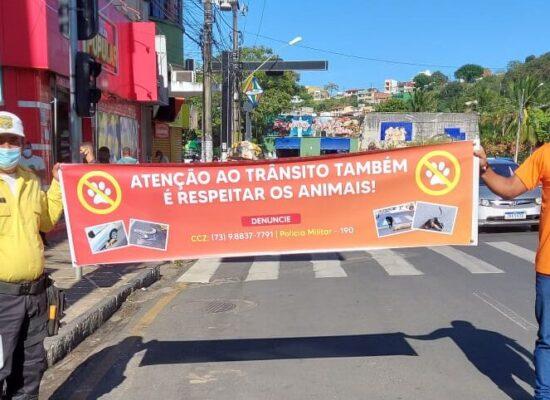 Campanha de conscientização pela defesa e proteção dos animais prossegue neste sábado, na praça Cairu