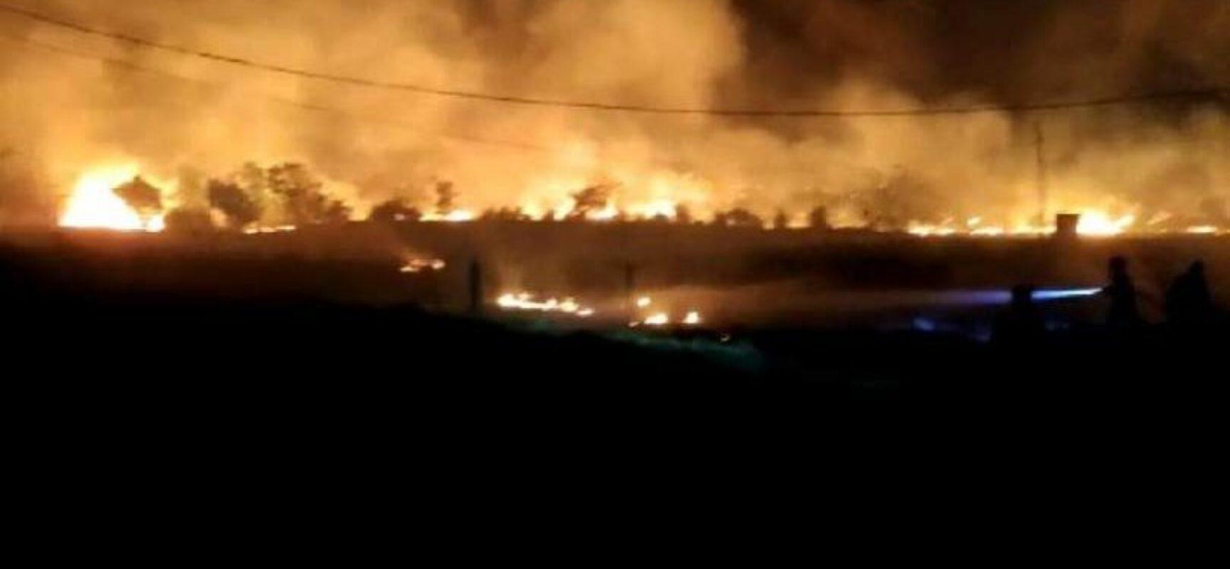 Incêndio atinge área de 20 mil metros em Guanambi
