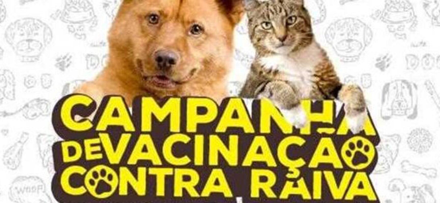 Prefeitura de Ilhéus inicia campanha de vacinação antirrábica nesta terça (31)
