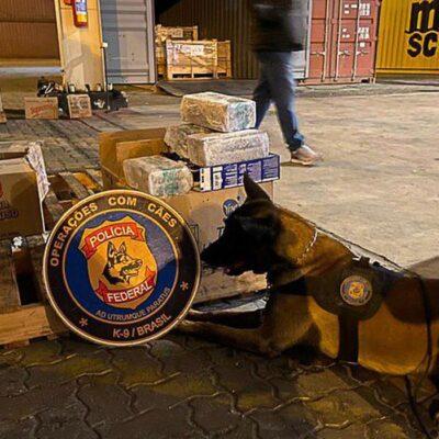 Polícia Federal apreende 5 toneladas de cocaína no porto do Rio